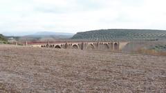 PUENTE SOBRE EL GUADALIMAR (FerrocarrildelBergantes) Tags: linares baeza empalme guadalhorce guadalimar puente vía verde saint girons sent gironç