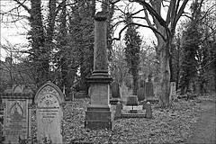 General Cemetery  Monochrome (brianarchie65) Tags: generalcemetery cemeteries headstones brokenheadstones graves grave trees ivy hull springbankwest kingstonuponhull cityofculture canoneos600d brianarchie65 geotagged unlimitedphotos ngc monochrome blackandwhite blackandwhitephotos blackandwhitephoto blackandwhitephotography blackwhite123 blackwhiterealms flickrunofficial flickr flickruk flickrcentral flickrinternational ukflickr