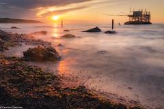 Punta Aderci (SDB79) Tags: punta aderci vasto abruzzo mare costa trabocco paesaggio