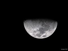 Moon 11-16-18 (Daniel Y. Go) Tags: nikon nikond900 d900 superzoom philippines moon lunar evening sky outerspace twilight astrophotography nightsky