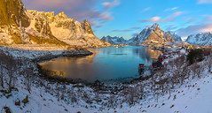 A morning in Reine
