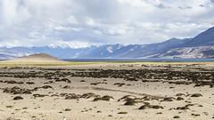 Tsomoriri #2 (jean matthieu) Tags: blue canon clood cloods color eos himalaya india indiantibet ladakh lake landscape light montain montains sky tsomoriri