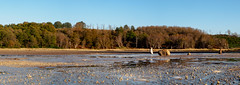 Panoramica Caldara (max832) Tags: autunno autumn olympus em10iii omd 2018 composed water reflections italy micro43 panorama manziana of colorato colors blue colore cpl composedpanorama italia panoramica blu 2018autumn sky acqua landscape mft 25mm18