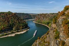 The mighty Rhine (Milad DG) Tags: rhine rhein river germany deutschland rivervalley valley wandern hiking worldheritage rheinsteig rhinelandpalatinate rheinlandpfalz nikond5500 nikkor20mm