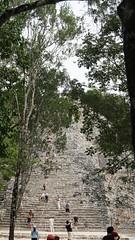 2017-12-07_12-28-20_ILCE-6500_DSC03041 (Miguel Discart (Photos Vrac)) Tags: 2017 57mm archaeological archaeologicalsite archeologiquemaya coba e1670mmf4zaoss focallength57mm focallengthin35mmformat57mm holiday ilce6500 iso100 maya mexico mexique sony sonyilce6500 sonyilce6500e1670mmf4zaoss travel vacances voyage yucatecmayaarchaeologicalsite yucateque