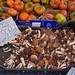 Pioppini - Samthauben Pilze auf dem Markt in Rom