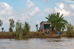 Life Along the Mekong (Jill Clardy) Tags: asia mekongriverdelta vietnam 201410244b4a0266 high water river delta palm hut home