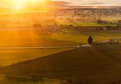 _DSC2044-1 (Giuseppe Cocchieri) Tags: landscape paesaggio tramonto sunset countryside campagna mist nebbia mood atmosfera