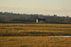 _B5A1271REWS Across the Fields, © Jon Perry, 28-1-19 zbn (Jon Perry - Enlightenshade) Tags: jonperry enlightenshade arranginglightcom 28119 20190128 otmoor oxfordshire evening dusk landscape