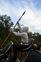 EEF_7676 (efusco) Tags: boar medieval spear brambleschoolearteofthehunt bramble schoole military arts academy florida ferel hog pig