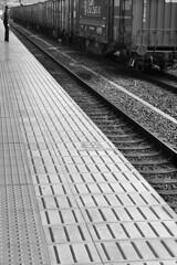 Japan - Kyoto (luca marella) Tags: japan kyoto lucamarella train travel transport bw bn blackwhite biancoenero bnw street streetstyle trainstation rail railway railroad