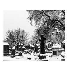 A quiet place (joannab_photos) Tags: quiet cold winter snow luxembourg cemetery cimetière bnw blackandwhite