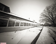 Greenhouse growing (DelioTO) Tags: 4x5 blackwhite canada d23 f175 fomapan100 garden landscape ontario panoramic pinhole snow toned trails winter woods