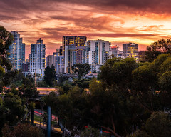 Downtown San Diego Sunset (Adam J Gaeth) Tags: sandiego nikon sunset 2018 november fall lights buildings balboa park california d810
