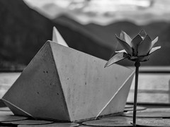 Paper boat (Riccardo Palazzani - Italy) Tags: iseo pisogne lake art sculpture flower boat paper