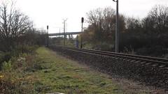 205 Gradec gyorsvonat Nagykanizsa határában (Péter Vida) Tags: máv gradec gyorsvonat railroad v43