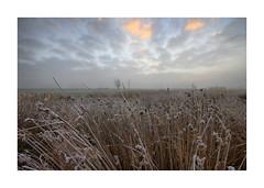 Sunrise Waterdonken Breda 06 (cees van gastel) Tags: ceesvangastel canoneos550d clouds sigma1020mm landscape landschap luchten natuur nature nederland netherlands noordbrabant breda water winter waterdonkenbreda waterakkers wolken sunrise zonsopkomst mist horizon einder