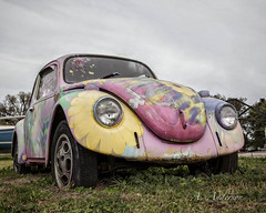 Just Another Lovebug (A Anderson Photography, over 4 million views) Tags: volks canon lovebug flowerpower volkswagen vw