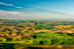 Palouse Farm Land_03 (John Bielick) Tags: 2018 america colfax copyrighted johnbielick northamerica palouse park photogtrekker statepark steptoebuttestatepark thestates theunitedstates us usa unitedstates unitedstatesofamerica washington whitmancounty farmland field rolling hill green farming scenic