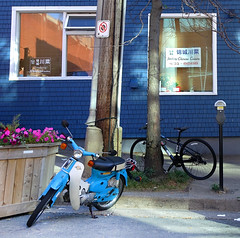 Blue moped parked in front of a Chinese restaurant (Coastal Elite) Tags: jinchengchinesecuisine halifax novascotia chinese restaurant worldwide documentation project blue bike moped mobylette scooter cuisine business commerce atlantic canada canadian dresdenrow street parked parking window sign affiche enseigne signs jincheng windows sidewalk curb stand kickstand halifaxns