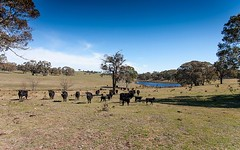 Redground Road, Crookwell NSW
