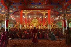 Ceremony at Yarchen Gar, Tibet 2018 (reurinkjan) Tags: tibetབོད བོད་ལྗོངས། 2018 ༢༠༡༨ ©janreurink tibetanplateauབོད་མཐོ་སྒང་bötogang amdoཨ༌མདོ khamཁམས་བོད easterntibet pelyülདཔལ་ཡུལ།county yarchengarཡར་ཆེན་དཀར་། yarchengönཡར་ཆེན་དགོན། monkགྲྭ་བ།grwaba tibetannationalitytibetansབོད་རིགས།bodrigs tibetannationtibetanpeopleབོད་ཀྱི་མི་བརྒྱུདbökyimigyü