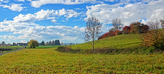 01528 Fehraltorf ZH (Schweiz) (Fotomouse) Tags: fotomouse margrit landschaft landscape himmel sky bäume herbst autumn wolken weide baum gras feld fehraltorf schweiz swiss svizzera switzerland clouds field trees grass weed 1001nightsmagiccity magiccity 1001nights 1001nightsmagicwindow