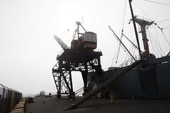 PR in Fog (48 of 102).jpg (Globalbirder) Tags: sfbay california bayarea landscape pointrichmond ferrypoint travel cityscape fog weather usa globalbirder