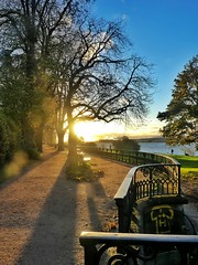 Sunset at River Elbe  #hamburg #Elbe #landscape #seascape #sunset #trees #nature #river #traveling #europe #germany #cityscape #autumn (susawahl) Tags: elbe landscape europe autumn river traveling trees nature hamburg cityscape seascape sunset germany