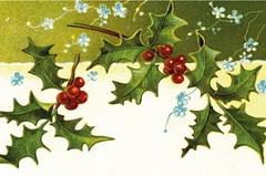 Record Office Christmas Cards❄️ (Flintshire Record Office) Tags: flintshire record office archifdy sir y fflint christmas cards nadolig