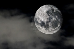 Lua Quarto Crescente | First Quarter Moon (Marco Abud) Tags: marcoabud marcoabudimagens marcoabudfotografia lua moon december21 quartocrescente luaquartocrescente fasecrescente firstquartermoon sky clouds universe star brasil brazil crescentmoon