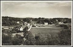 Postkort fra Agder (Avtrykket) Tags: bolighus eng flagg hus postkort skog uthus vei arendal austagder norway nor