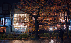 Kyoto By Night (bacon.dumpling) Tags: autumn fallfoliage fujifilmxpro2 fujinonxf16mmf14rwr japan koyo kyoto leafchangingseason