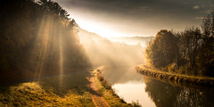 Morning Fall, in France (Sivispacem...) Tags: gudmont villiers canal automne autumn fall colors trees forest river sun soleil foret rivière arbres sony a7ii zeiss 35mm28