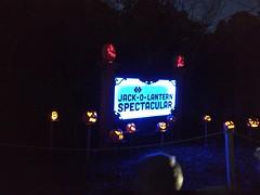 IMG_20181018_190314117 (Peter.Anderson) Tags: pumpkins halloween jack o lantern spectacular jackolantern carving celebrity