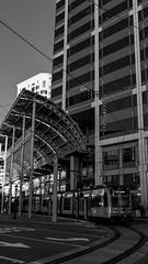 IKEX6275 (inpb) Tags: bw blackwhite california sandiego sandiegotrolley streetphotography trolley