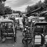 Pedicabs thumbnail
