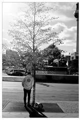 analog - Minox 35 GT - T-Max 100 (tom-schulz) Tags: minox35gt tmax100 film 35mm analog monochrom bw sw frame rahmen berlin thomasschulz urban strase bus person baum birke fernsehturm