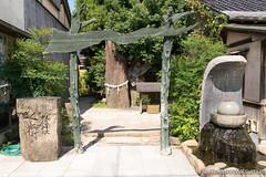 Yokai Shrine (takashi_matsumura) Tags: yokai shrine mizuki shigeru road sakaiminato tottori japan nikon d5300 妖怪 妖怪神社 境港 水木しげるロード 鳥取 sigma 1750mm f28 ex dc os hsm