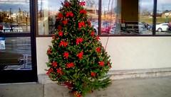 Supermarket Christmas tree! - HWW (Maenette1) Tags: christmas tree windows jacksfreshmarket menominee uppermichigan happywindowswednesday flicker365 allthingsmichigan absolutemichigan projectmichigan michiganchristmas
