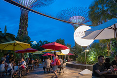 2018-12-Christmas-Wonderland_004 (laurenceputra) Tags: singapore christmaswonderland gardensbythebay lights night supertrees christmas wonderland