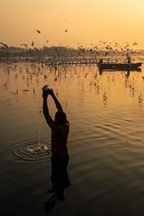 Surya Namaskar (Ashmalikphotography) Tags: delhi yamunaghat cleanyamuna faith leapoffaith religion siberianbirds migratorybirds sunrise incredibleindia ashmalikphotography ashishshoots ashishmalikphotography
