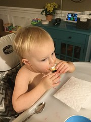"""Dani Eats a Cookie • <a style=""""font-size:0.8em;"""" href=""""http://www.flickr.com/photos/109120354@N07/46435978811/"""" target=""""_blank"""">View on Flickr</a>"""