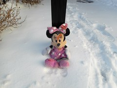 Blunt Force Trauma to the Head (navejo) Tags: montreal quebec canada snow cold minnie mouse bluntforcetraumatothehead post
