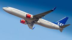 Boeing 737-86N(WL) LN-RGH SAS Scandinavian Airlines (William Musculus) Tags: airport spotting plane aviation airplane fraport fra eddf frankfurt am main rhein frankfurtmain flughafen lnrgh sas scandinavian airlines boeing 73786nwl sk 737800 william musculus