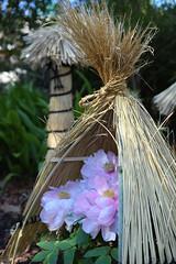 Peony (tsu55) Tags: flower nikon d40 pink winter