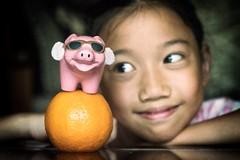 豬年旺旺來 (Anna Kwa) Tags: k pig orange portrait chinesenewyear 2019 annakwa nikon d750 1050mmf28 my happiness always seeing heart soul throughmylens hope wish
