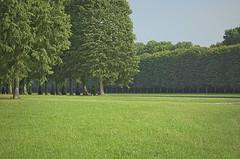 Versailles-Paris-France - laisure (Tayon) Tags: paris versailles france nikon d40 nikkor 1855m