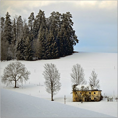 The Yellow House (pixel_unikat) Tags: mühlviertel austria house abandoned yellow trees forest white snow winter cold landscape