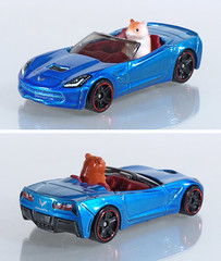 HOT-2017-SET-Corvette-Convertible (adrianz toyz) Tags: hot wheels diecast toy model car 2017 adrianztoyz 2014 14 corvette stingray convertible cabrio cabriolet malaysia hamster chevrolet chevy